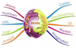 Brain - Left_Right - Mind map