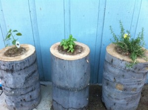 awesome-diy-outdoor-planters10
