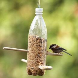 bottle bird feeder (1)