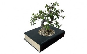 recycled-book-plant-pot