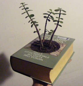 recycled-book-planter-design