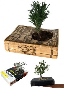 recycled-diy-planters